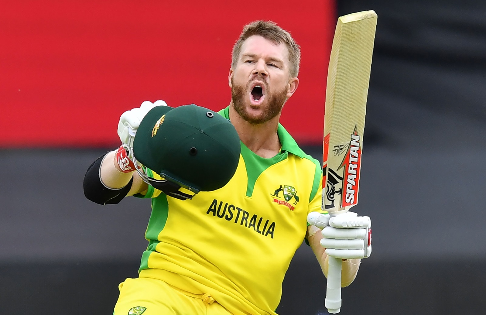 David Warner IND vs AUS Series 2020